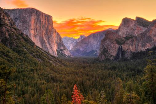 Yosemite MAC OS