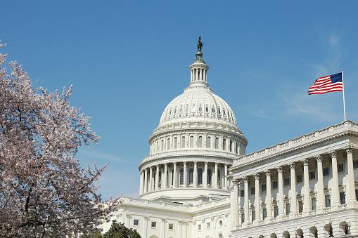 Congress Ransomware